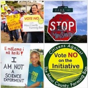 GMO collage