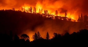 PG&E Lawsuit   Wildfires Lawsuit
